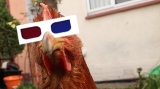 Chicken 3D glasses