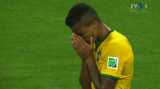 Brazilia - Germania 1 -7