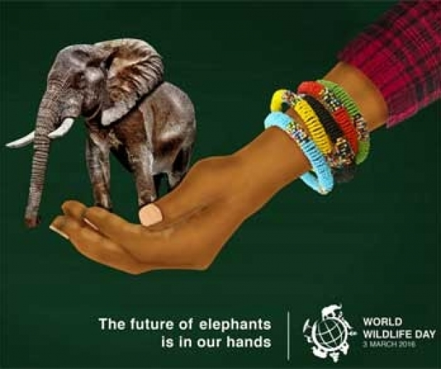 World Wildlife Day 2016