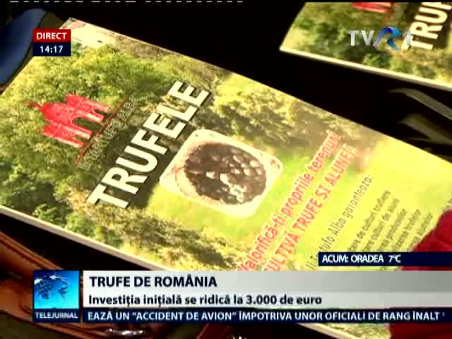 Trufe de Romania