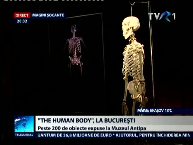 The Human Body la Bucuresti