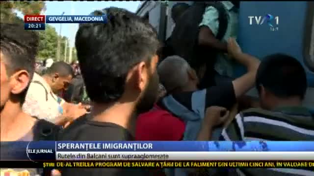 Speranțele imigranților