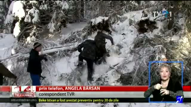 Telefon direct, Angela Bârsan