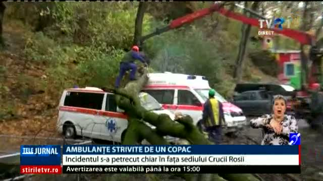Ambulante strivite de un copac