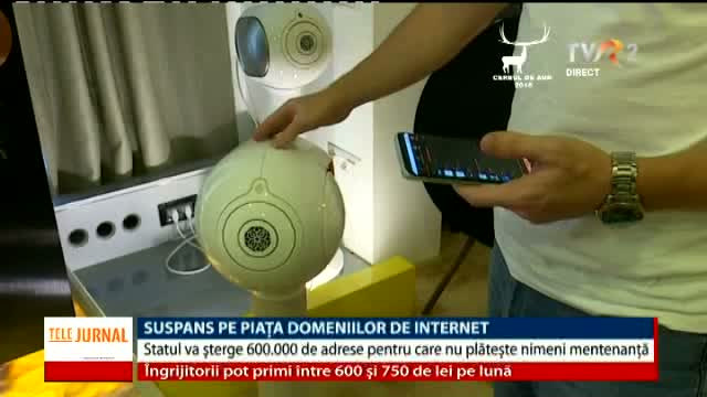 Suspans pe piața domeniilor de Internet