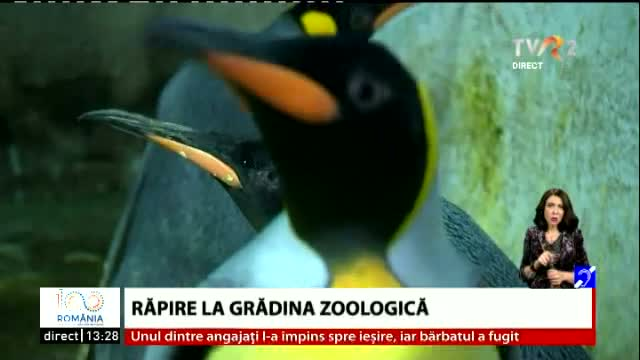 Răpire la ZOO