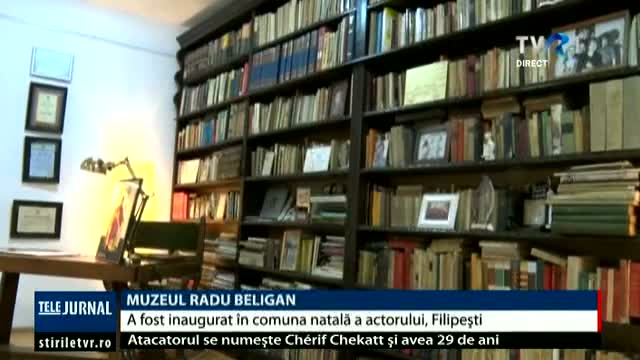 Muzeul Radu Beligan