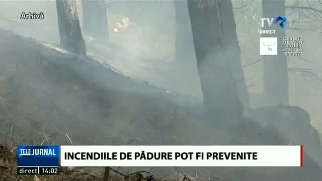 Incendiile de pădure pot fi prevenite