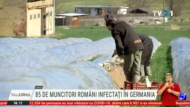 Muncitori romani infectati in Germania