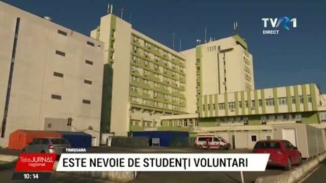 Studenti voluntari