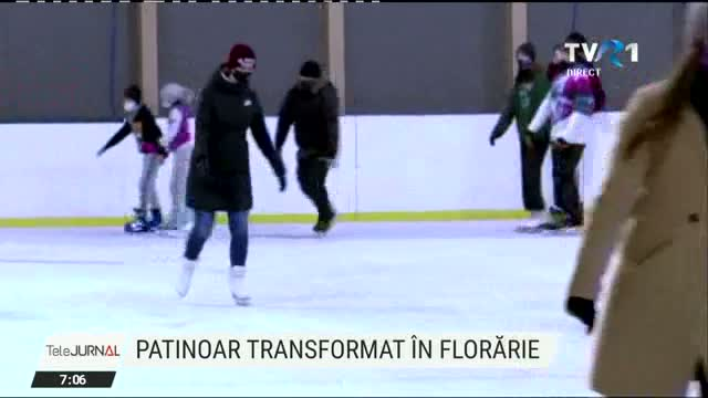 Patinoar transformat in florarie